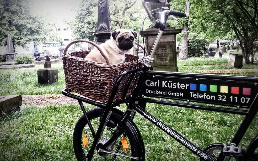 Autofreier Sonntag  in Hannover – Klimaschutz mit der Carl Küster Druckerei Hannover